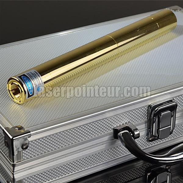 pointeur laser 5000mW surpuissant